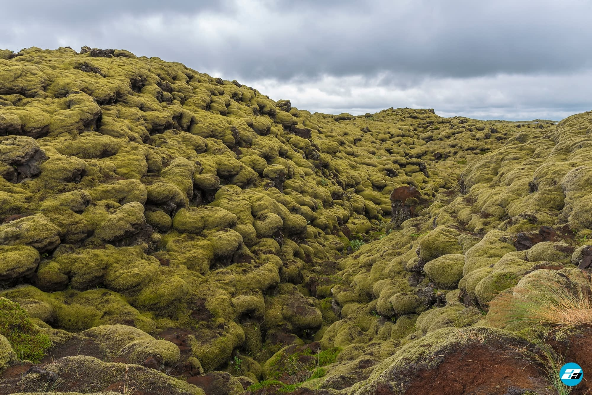 Iceland Travel, Ring Road, The Mossy Lava Fields