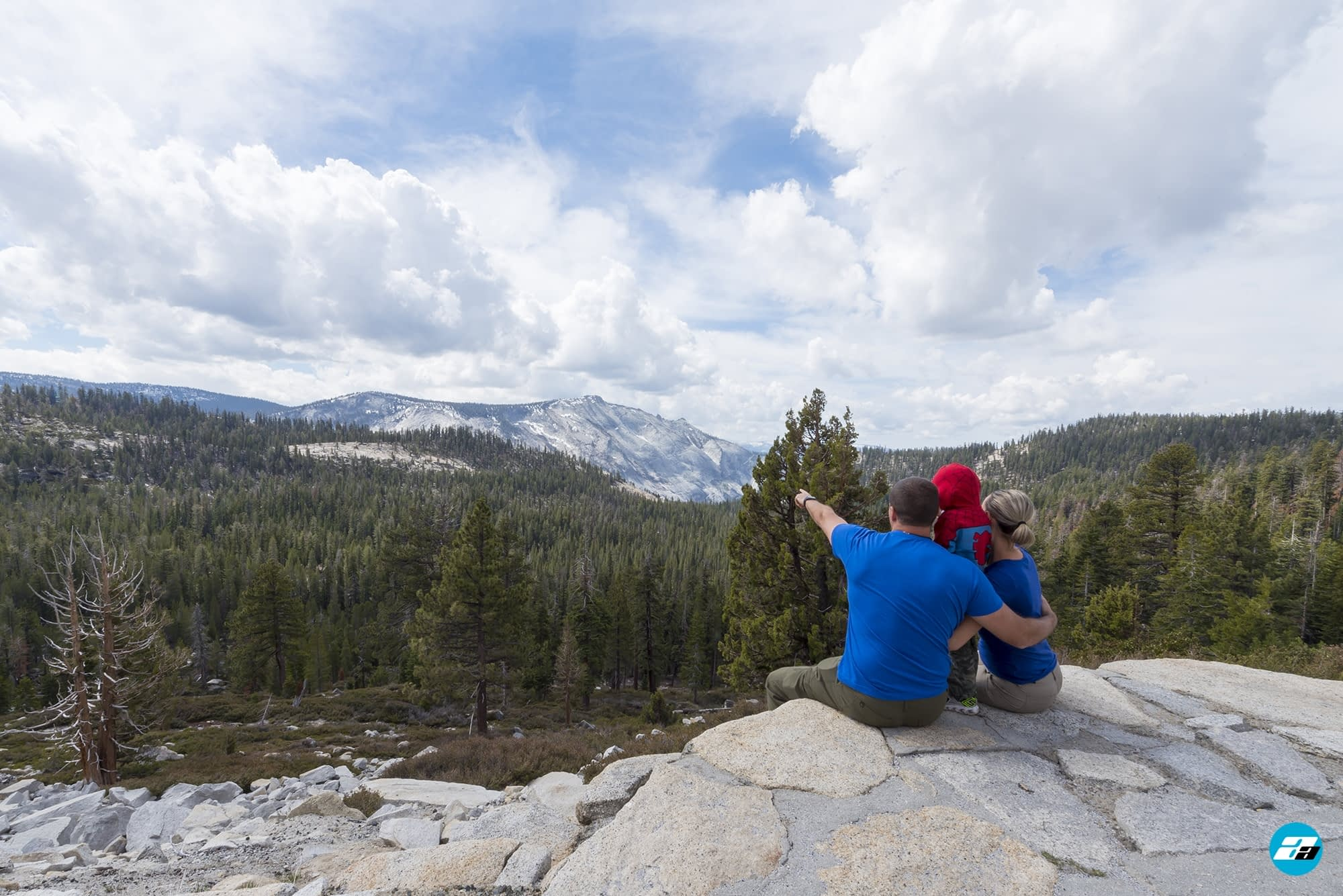 Yosemite National Park, California, USA. Landscape. Mountain View. Forest. Family
