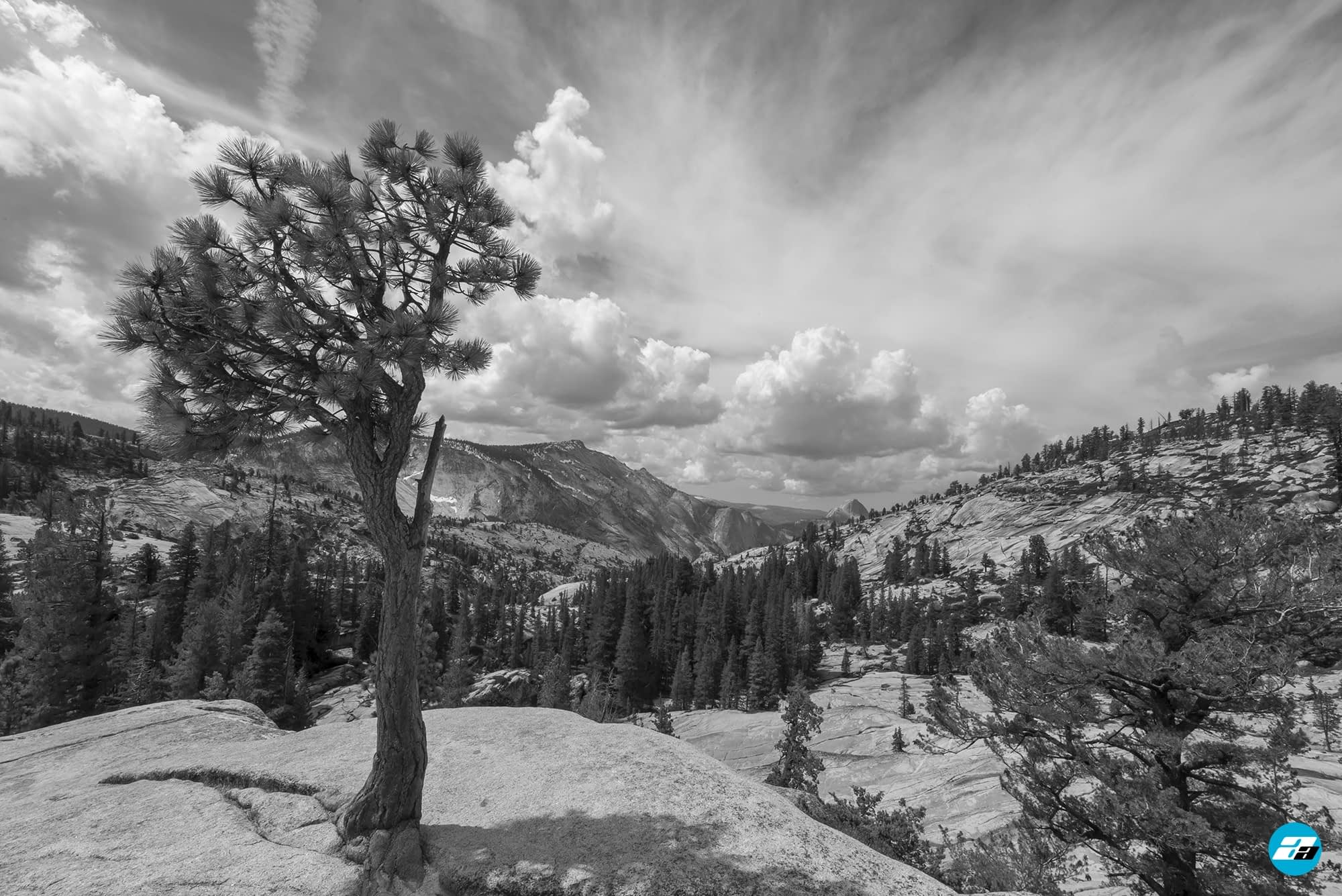 Yosemite National Park, California, USA. Landscape. Solitude. Mountain View. Olmsted Point