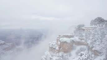 Grand Canyon National Park, Arizona, USA. Canyon View. Winter Season. Arizona Attraction & Travel. Canyon Snow. Fog View.